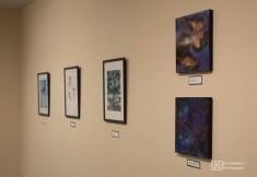 lisa solo exhibit-18
